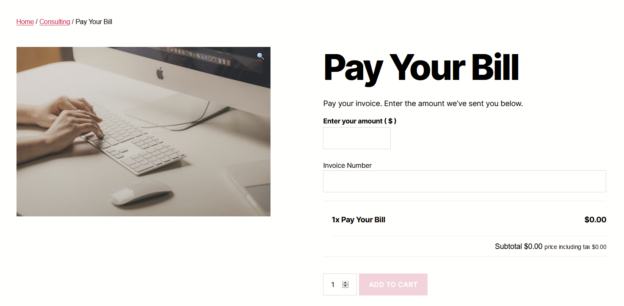 "Screenshot of Pay Your Bill product showing an ""Enter your amount"" text input and an ""invoice number"" text input."